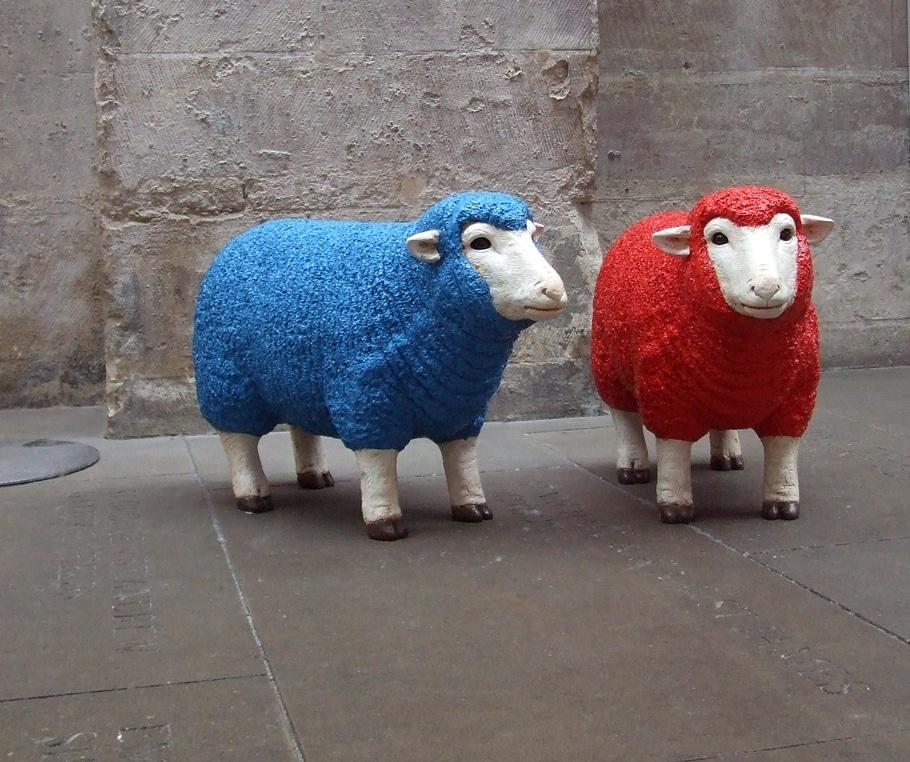 Wool Week two sheep
